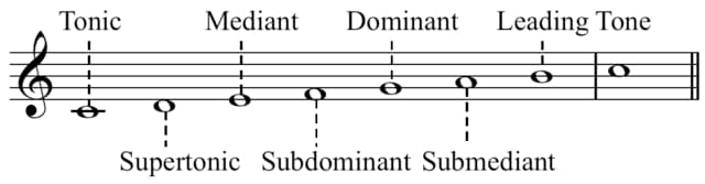Scale degree names on a C major scale.
