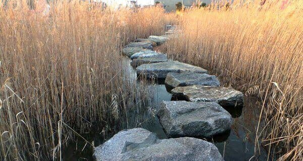 The Music Scale: Stepping stones